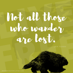 5 x 5 Wandering Porcupine Sticker – Only $4.95